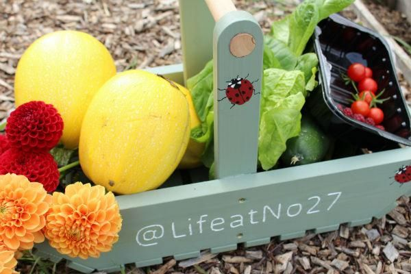 fresh veg from the allotment, healthy ingredients, life at no.27 Annabelle Padwick