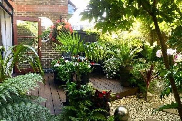 Mike-Spezzano-every-space-counts-competition-bbc2-gardeners-world