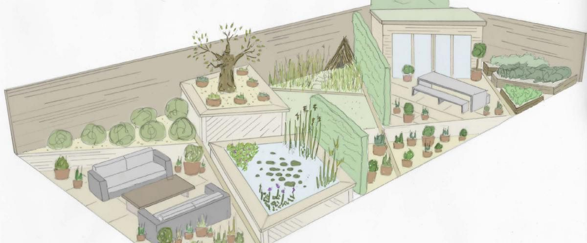 Tesco Every Little Helps Garden illustration drawing show garden design