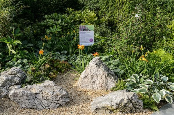 the popular shady border in the Wyevele Garden Centres Solutions Garden designed by David Stevens