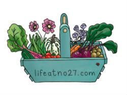 Life at No.27 logo