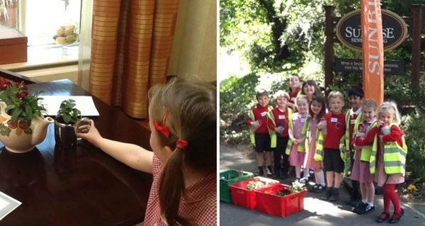 weeke primary school - tea pot plant pot entry