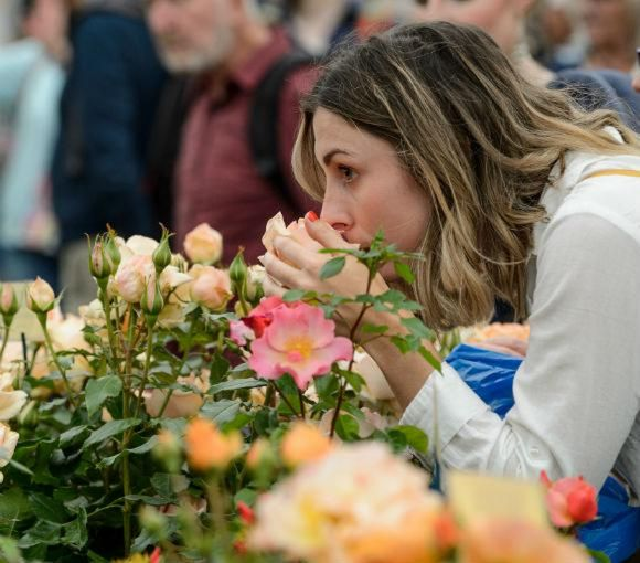 visitor with roses in the Floral Marquee