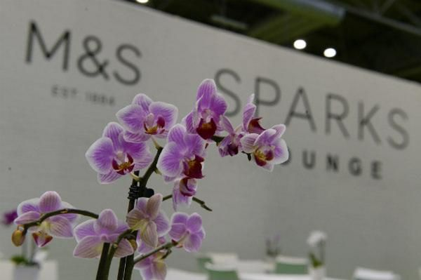 M&S orchids at BBC Gardeners' World Live