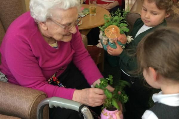 willowtown community primary school - teapot plantpot competition