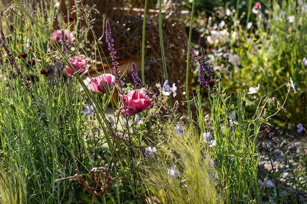 Emma Berry, Emma Berry Gardens