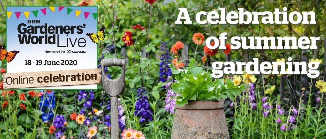 celebration of summer gardening