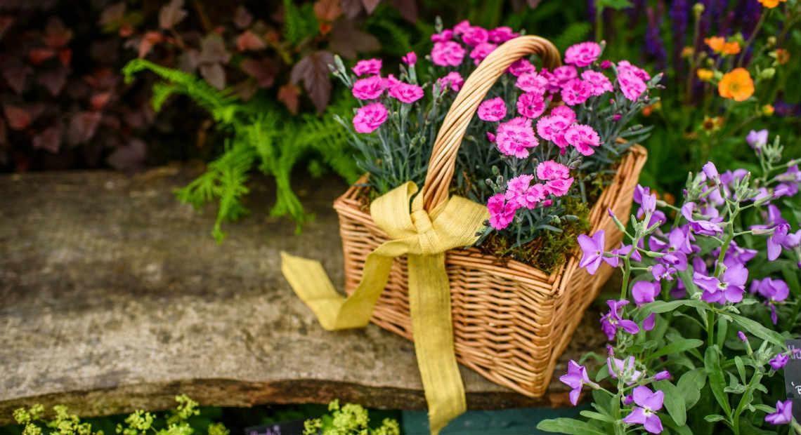 Inspiring your Spring garden