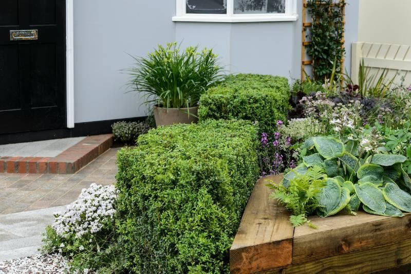 Young Landscapers Award Garden, by David Stevens