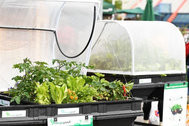 Vegepod at BBC Gardeners' World Live