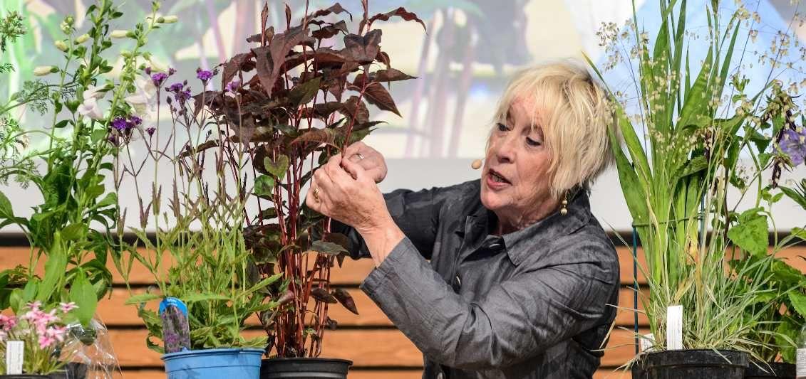 CArol Klein at BBC Gardeners' World Live 2019