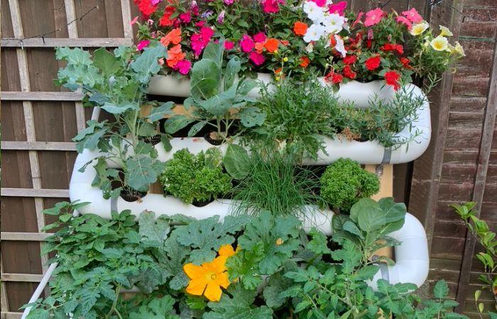 Hydro veg kit for gardeners