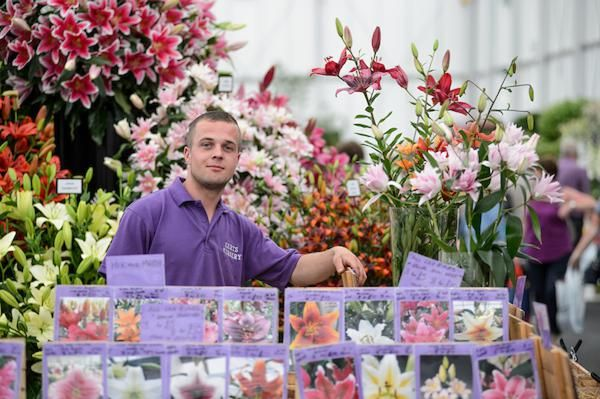 Harts Nursery in the BBC Gardeners' World Live Floral Marquee