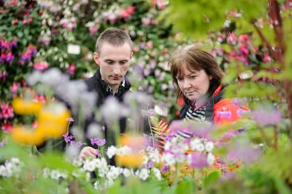 Visitors shopping from Cooks Garden Centre in the Floral Marquee at BBC Gardeners' World Live