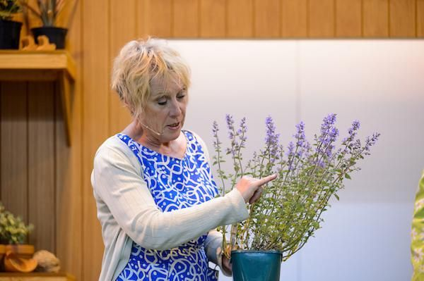 Carol Klein on the Potting Shed Stage at BBC Gardeners' World Live