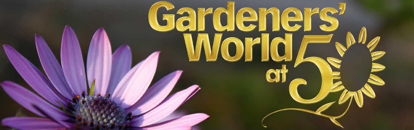 Gardeners' World Golden Jubilee Plant