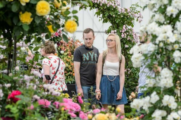Visitors enjoying the roses at BBC Gardeners' World Live