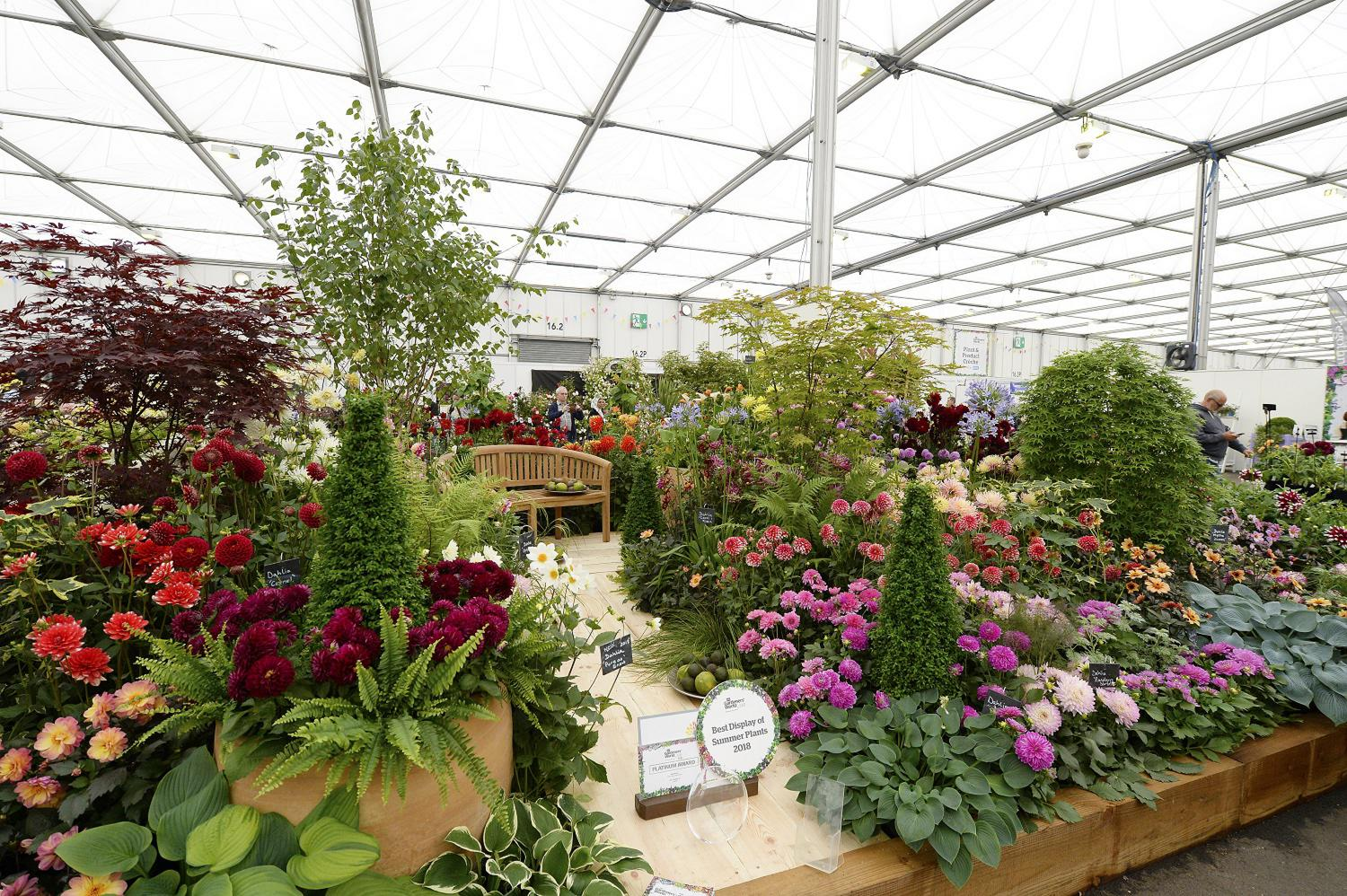 Stonebarn Landscapes and the National Dahlia Collection display in the Floral Marquee