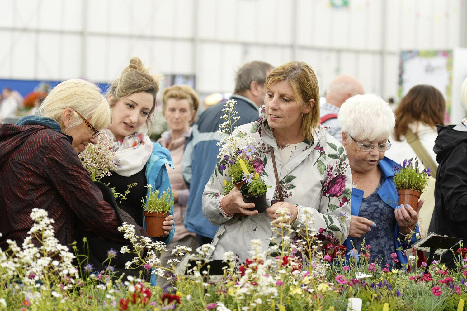 Shopping in the Floral Marquee