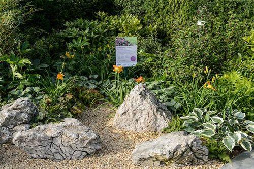 Solutions Garden by Wyevale Garden Centres
