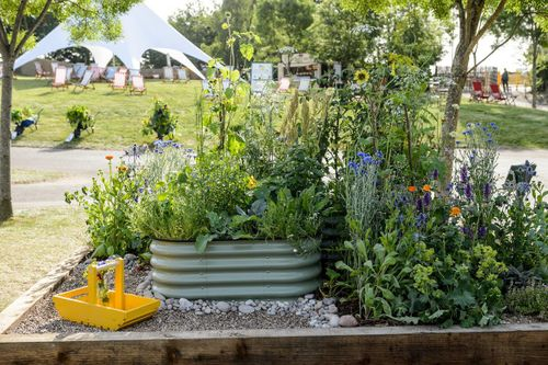 A Space for All Border designed by Caroline Moore
