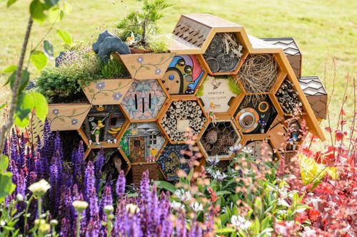 Bee Inspired Border designed by Aldetha Raymond and Tiernach Mcdermott,