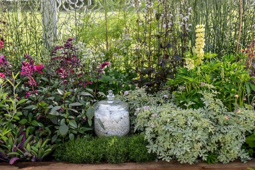 The Jar of Life Border designed by Nikki Hollier Border in a Box Best Beautiful Border 2018