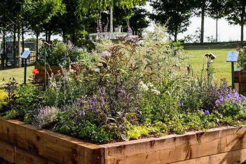 Useful and Beautiful Border designed by Alexa Ryan Mills Garden Design