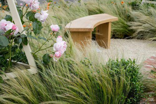 A Garden Lover's Diary – November