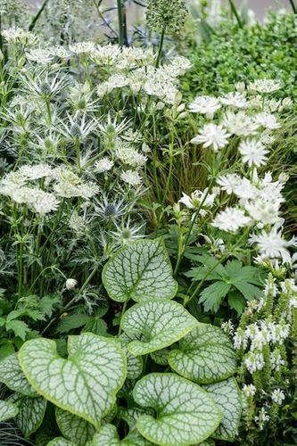 Every space counts - small garden ideas