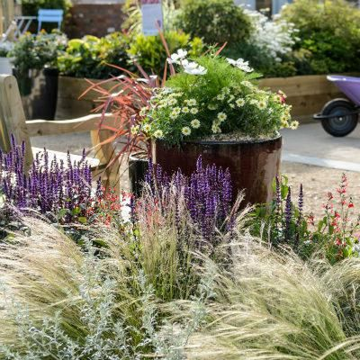 Wyevale Garden Centres Solutions Garden, the Garden Journey #3