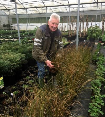 Wyevale Garden Centres Solutions Garden, the Garden Journey #2
