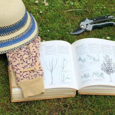 Top 10 gardening books of 2019