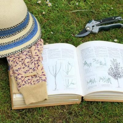 Top 10 gardening books of 2019