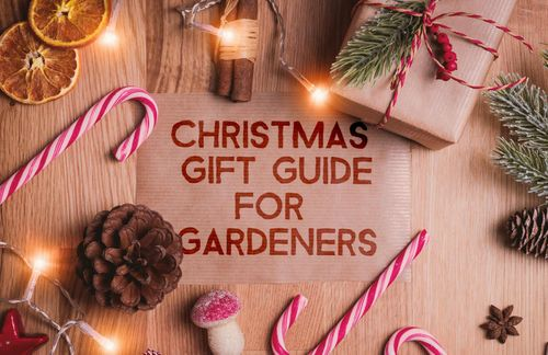 Christmas Gift Guide for Gardeners