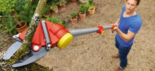 Products to make gardening easier - 2019 gardening trend