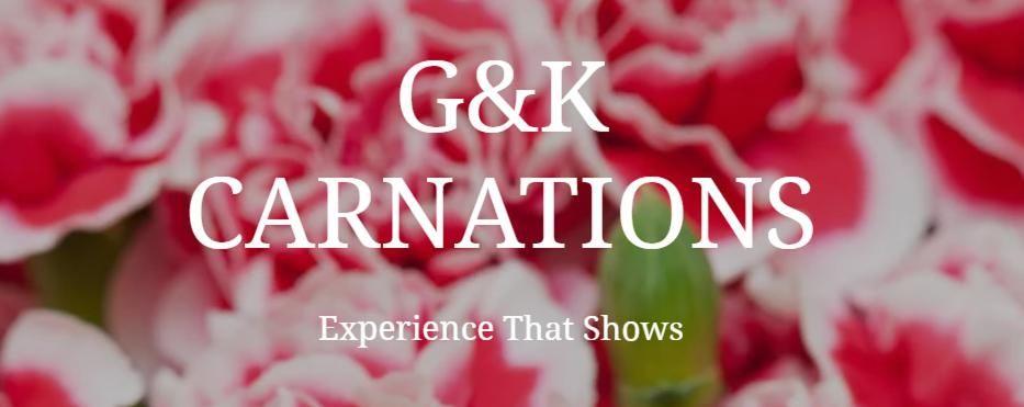 G & K Carnations
