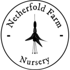 Netherfold Nursery