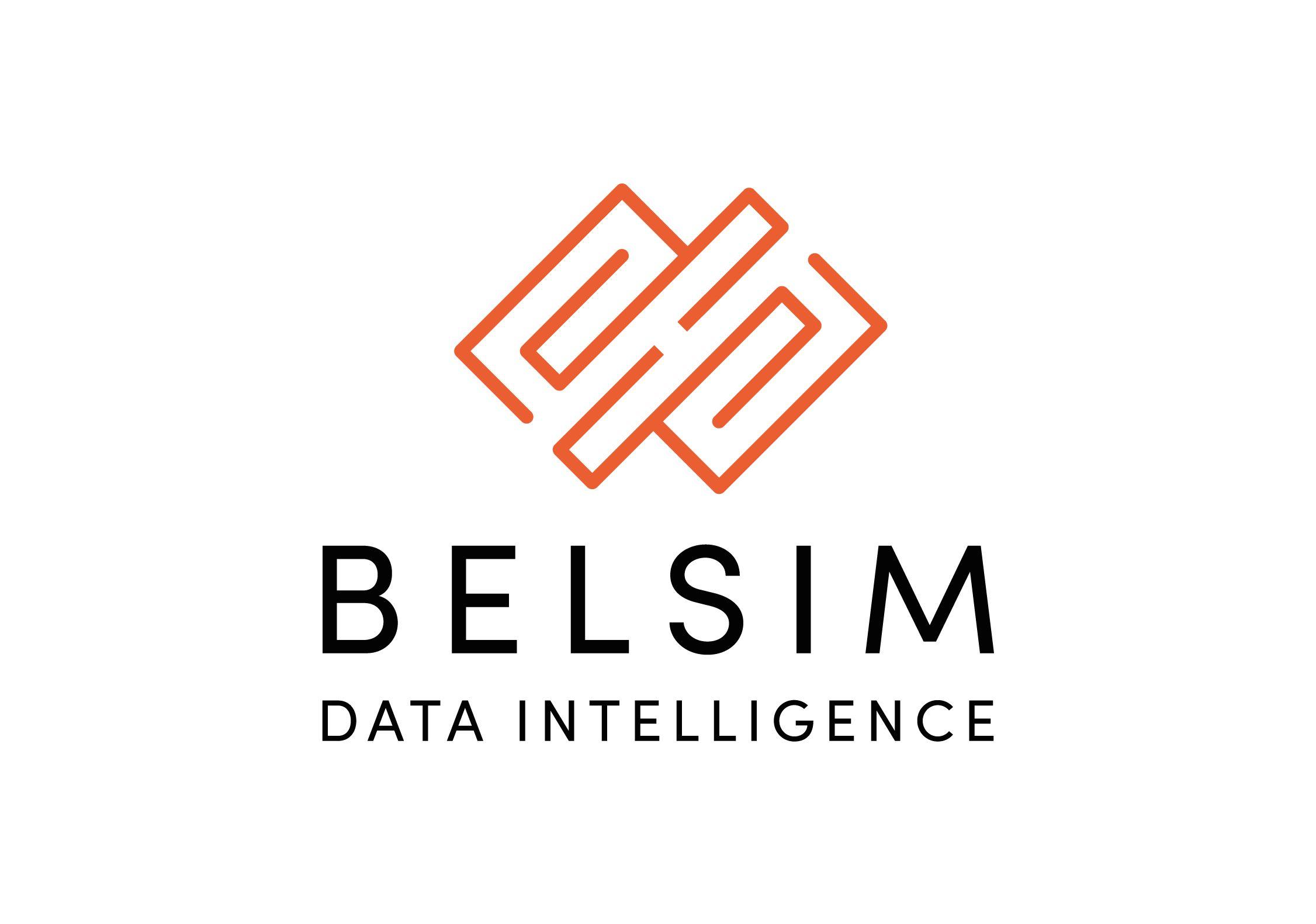 Belsim Engineering