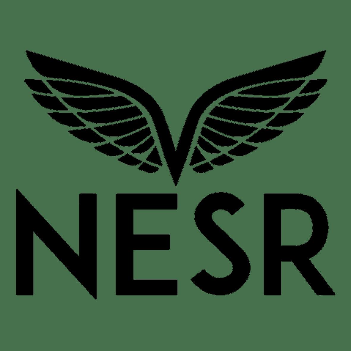 NATIONAL ENERGY SERVICES REUNITED CORP.  (NESR)