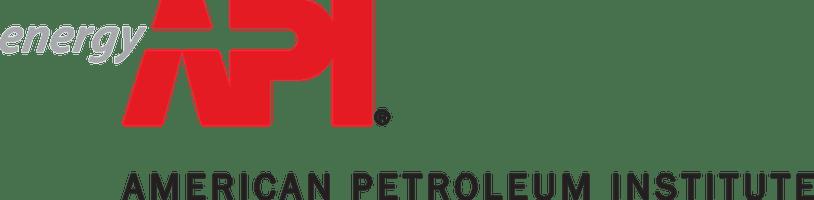 API Text Logo