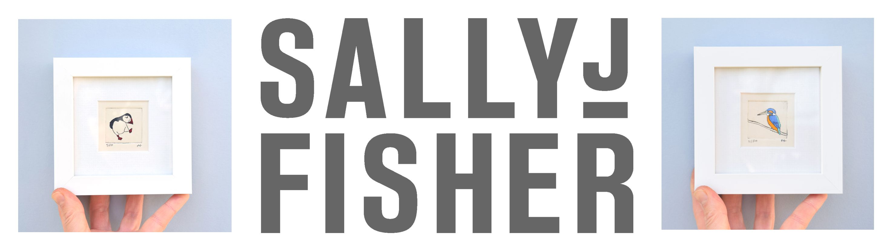 Sally J Fisher