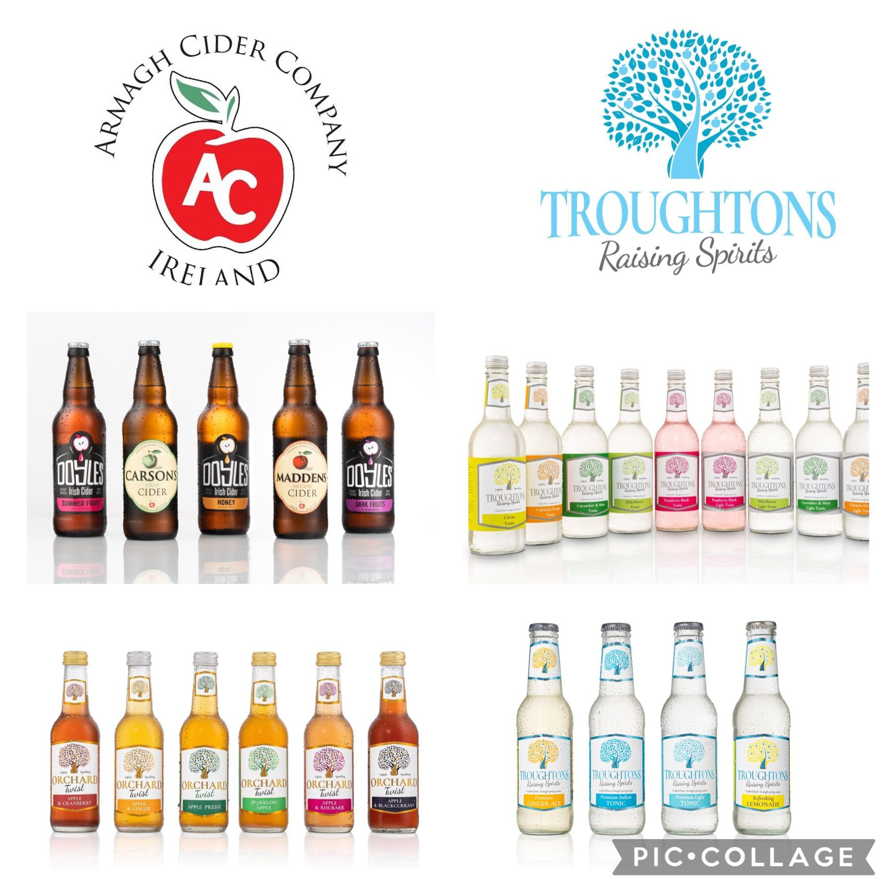 Armagh Cider Company & Troughtons Premium