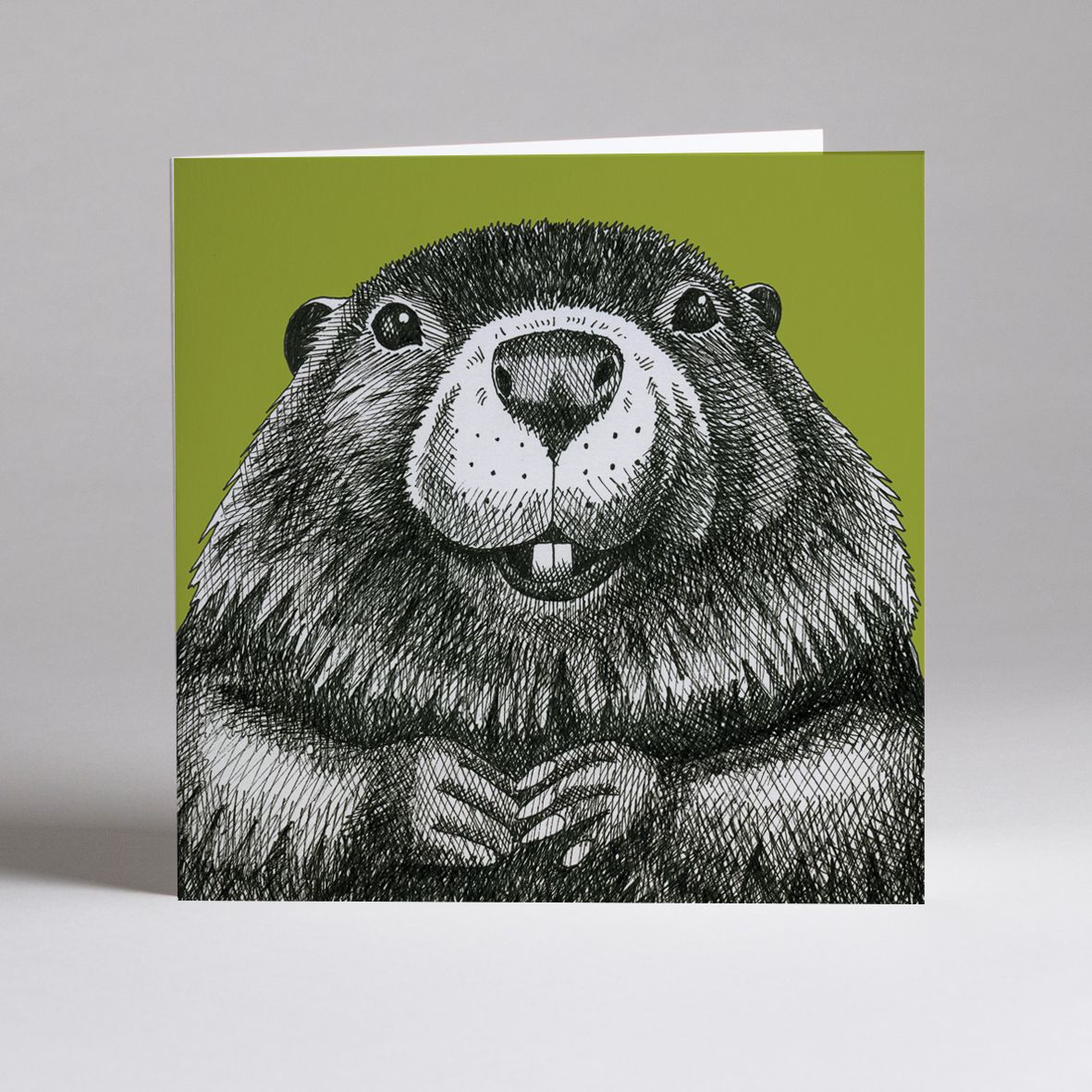 Animal Ink cards