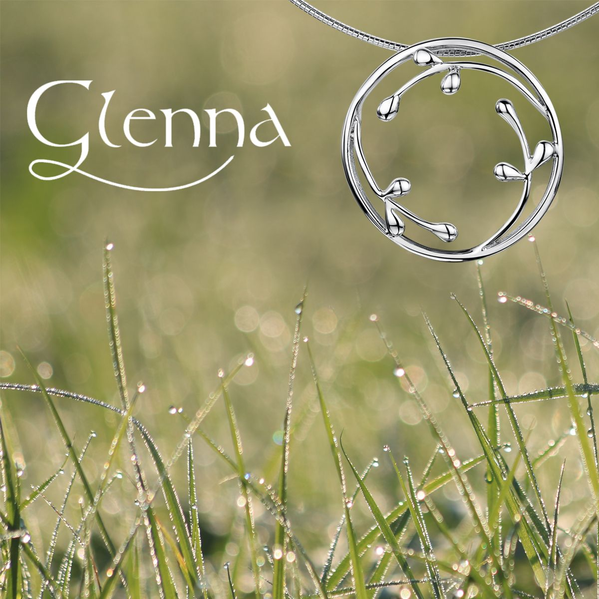 Free Delivery on all orders & Free Glenna Displays