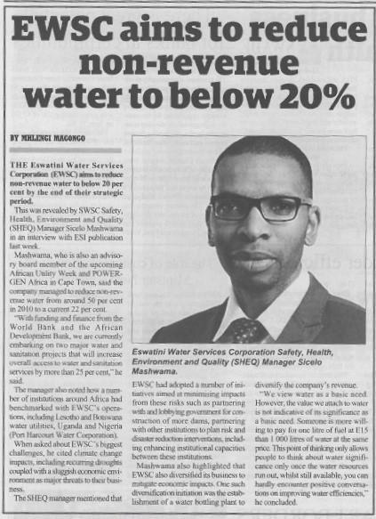 Swazi Observer article