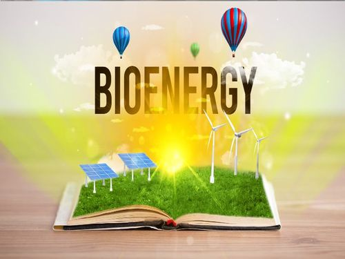 Bioenergy, the undervalued pillar of the clean energy transition
