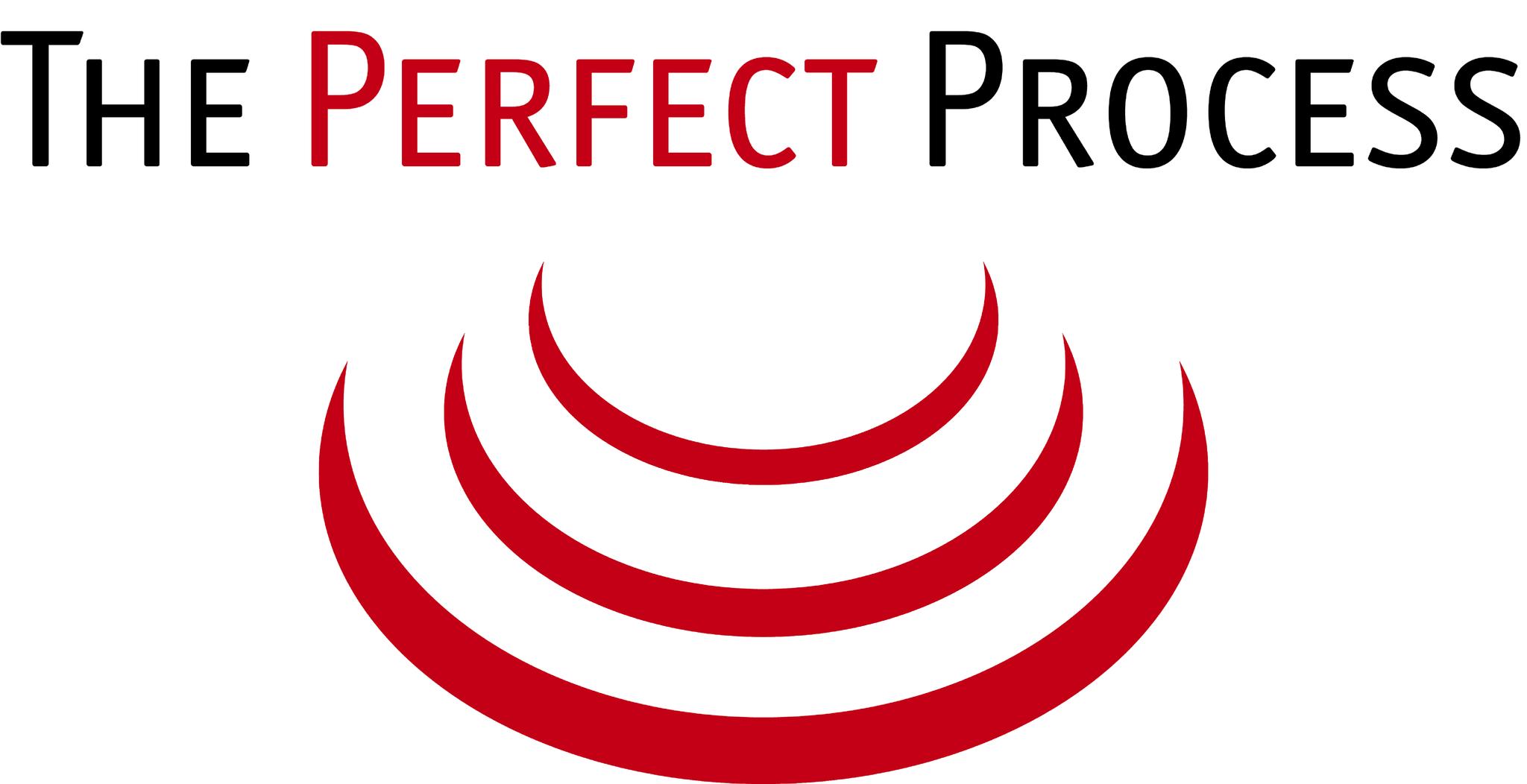 THE PERFECT PROCESS COMPANY