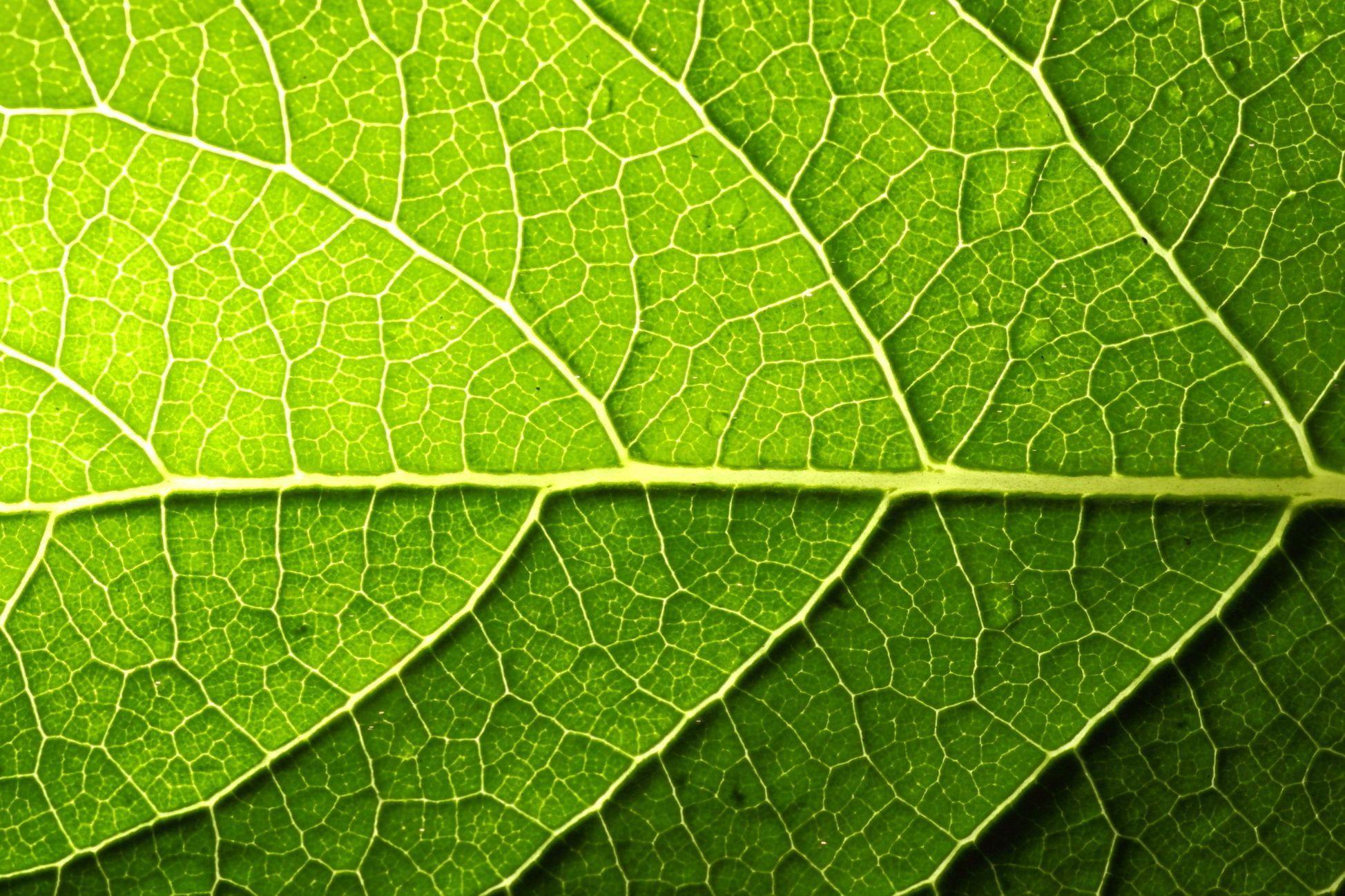 1. Greener Materials