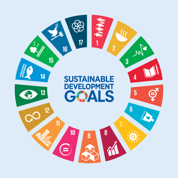 Align With The UN Sustainable Development Goals